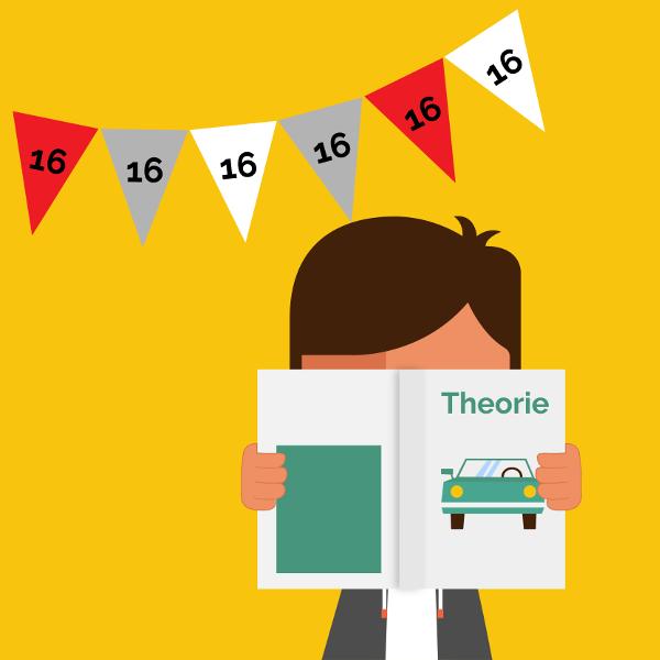 2ToDrive: je theorieexamen halen met 16 jaar